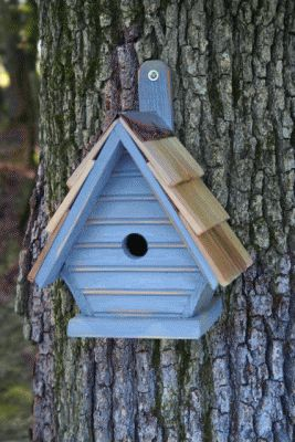Heartwood Chick Bird House - Blueberry 075G