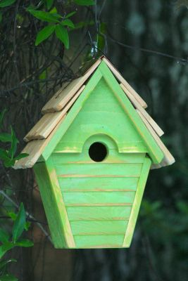 Heartwood Wren-in-the-wind Bird House - Green Apple 082I