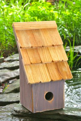 Heartwood Fruit Coops Bird House - Grape 193B