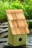 Heartwood Fruit Coops Bird House - Green Apple 193C