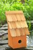 Heartwood Fruit Coops Bird House - Pumpkin 193G