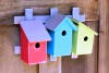 Heartwood Trellis Trio - Neon Trio Bird House 233A